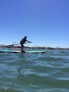 #pswcustomers #paddlesurfwarehouse grom surf