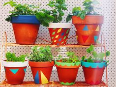 Create your own Fiesta Pots with Pip of Meet Me At Mike's : Good Stuff For Nice People! She Made It Her Own with Annie Sloan by giving these terracotta pots a colorful twist with Chalk Paint® decorative paint by Annie Sloan!