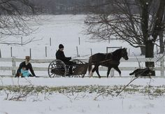 Lancaster County Pennsylvania Amish---day trip not far from home....taking the country back roads is best