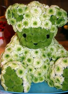 Teddy bear made of flowers! How adorable would this be if made of broccoli and cauliflower? Perfect finger food for a baby shower!