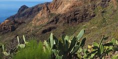 """""""On the northern part of the Canyon stands a mountain whose ochre silhouette contrasts with the black volcanic rock that surrounds it. Volcanic Rock, Tenerife, Hiking, Silhouette, Mountains, Travel, Black, Santiago, Walks"""