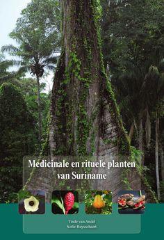 Medicinale planten Tropical, Island, Islands