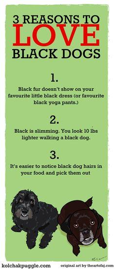 #BlackDogDay