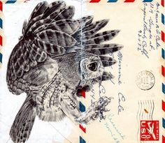 London-based artist Mark Powell reuses old envelopes as canvases to produce incredible drawings. His sketches are made using only a Biro pen. > markpowellartist.com