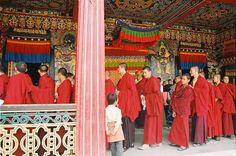 Lamas Rumtek - Tibetan Buddhism - Wikipedia, the free encyclopedia Buddhist Monk, Tibetan Buddhism, Sanskrit, Dalai Lama, Tantra, Buddhist Doctrine, Buddha, Gangtok, Culture