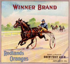 Redlands CA, Winner Brand fruit crate label