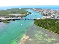 Islamorada Visit Florida, Florida Travel, Florida Keys, Key Largo Florida, Places Ive Been, Places To Visit, Sunshine State, Heaven On Earth, Best Memories