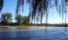 Rio Los Sauces - Arroyo de los Patos - Córdoba - Argentina