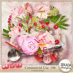 1$ ONLY ! Commercial Use 196