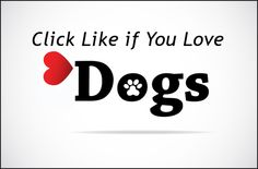 Click Like if you Love Dogs! Dog Lover Quotes, Dog Quotes, Dog Lovers, Vector Dog, Dog Icon, Love Dogs, Felt Hearts, Training Your Dog, Logos