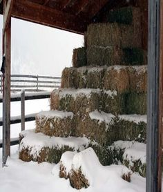 Winter on the Ranch Country Barns, Country Life, Country Living, Country Roads, Country Charm, Winter Love, Winter Day, Winter Snow, Winter Colors