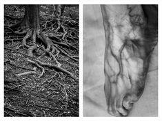 Photos That Show Similarities Between the Human Body and Nature - body art Human Body Photography, Nature Photography, Photography Projects, Human Body Art, Human Human, Elements Of Nature, Reportage Photo, A Level Art, Photography Awards