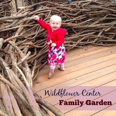 Free Fun in Austin: Lady Bird Johnson Wildflower Center Family Garden (free during Nature Nights this summer!)