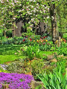 #neuer Gartentraum Frühlingsgarten