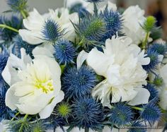 Centerpiece of Whitehorse Peonies and Blue Globe Thistle by The French Bouquet - James Walton Photography