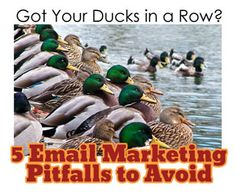 {5 Email Marketing Pitfalls to Avoid}   Do you have any other suggestions?  http://www.datadogmarketing.com/blog/index.php/2012/03/5-email-pitfalls-to-avoid/