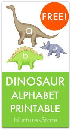 7 best dinosaur alphabet images day care dinosaur activities rh pinterest com