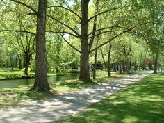 L'anneau d'eau du Domaine Maizerets en été Nature, Country Roads, Plants, Landscapes, Flora, Plant, The Great Outdoors, Mother Nature, Planting