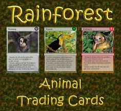 Are you looking for a way to add interest to your Rainforest unit?  Do you want to add more activities to your learning stations?  Are you searching for a project which integrates learning and technology?  Download my Rainforest Animal Trading Cards package!Included is a set of 54 trading cards highlighting birds, reptiles, insects, primates and other mammals of the rainforest.