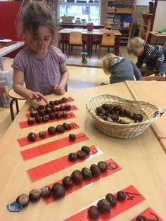 Best Indoor Garden Ideas for 2020 - Modern Maths Eyfs, Eyfs Classroom, Eyfs Activities, Nursery Activities, Preschool Learning Activities, Autumn Activities, Preschool Activities, Kids Learning, Nature Activities
