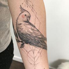 Tatuagem criada por Sindy Brito de Brasília. Calopsita (Passáro) em preto e cinza e traços delicados.