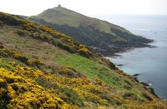 Often known as Cornwall's 'forgotten corner' Rame Head is an AONB and contains the 800 acre Mount Edgcumbe Park, one of the most beautiful in England.