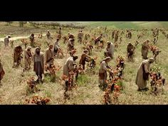 Laborers in the Vineyard -