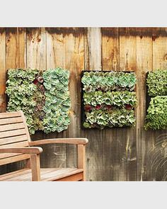 Wish i had known this when we were still in Colorado ... vertical hanging garden, totally doing this once the fence is up. Now the pup can't eatour lettuce