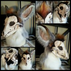 Skull Canine - Phoenix - by therealurubabe IS THIS NOT AMAZINGLY COOL?