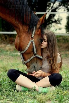 The immense tie of friendship. . . | horses | | horse lover || horse love | | island cowgirl | #horses #horselover #horselove #islandcowgirl   http://www.islandcowgirl.com