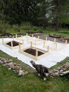 DIY - Kasvimaa viljelylaatikoihin — Keltainen kahvipannu Grow Boxes, Outdoor Furniture Sets, Outdoor Decor, Garden Planning, Garden Beds, Vegetable Garden, Planters, Gardening, Vegetables