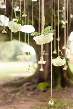 hanging flowers - ooo i love this idea for the wedding to go with the tissue paper balls from the ceiling.