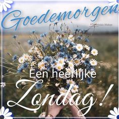 Friday Weekend, Good Morning, Qoutes, Sunday, Afrikaans, Hugs, Hearts, Friends, Buen Dia