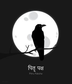 illustration drawing culture india moon poster crow