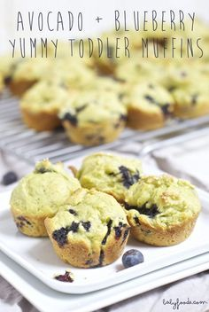 Avocado + Blueberry Yummy Toddler Mini Muffins are packed with nutritional goodness and are devoured by toddlers. #organictoddlerrecipe #toddlerrecipe http://babyfoode.com