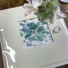 Hand painted Confetti Flower Field Greetings Cards by artist Hayley Reynolds. Designed and made exclusively for The Real Flower Petal Confetti Company! Real Flowers, Colorful Flowers, Beautiful Flowers, Delphinium, Hydrangea, Popular Wedding Colors, Pen Design, Flower Petals, Confetti
