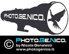 Corso Fotografia Piacenza