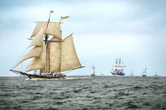 Clipper Ships Return: Green Vessels for Shipping Are in the Works