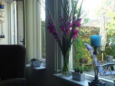 Mooie gladiolen gekregen. Staat helemaal leuk.