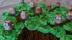 12 Owl Cake Pops Sittin' in a Tree - La Hoot Bakery - Akron, Ohio Owl Cake Pops, Owl Cupcakes, Monkey Cupcake Cake, Cupcake Cakes, Cup Cakes, Bakery Names, Pull Apart Cake, Peter Rabbit Party, Tree Cakes