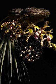 Makoto Azuma, Japan's greatest flower aritst, and Swarovski