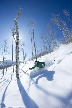 .whatta dayyyyy!!! Alpine Skiing, Snow Skiing, Snow Holidays, Downhill Bike, Ski And Snowboard, Mountaineering, Surfing, Ski Resorts, Wolf