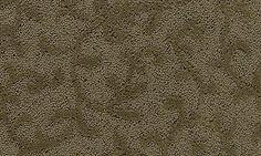 Mohawk Flooring's Forest Trace - Dark Meadow Wear-Dated carpet.