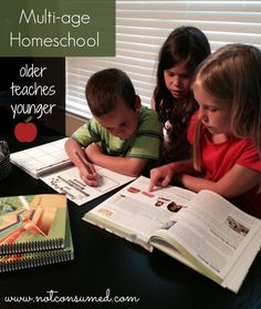 Do you teach multi-age homeschool? Thoughts on having them teach each other.