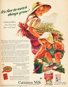 Vintage ad 1943 Carnation Milk
