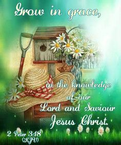 2  PETER  3:48   Grow in grace and knowledge of Jesus Christ.