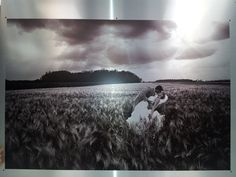 photomediadecor - Printing - High quality on aluminum Plexus Products, Art Reproductions, Installation Art, Your Image, Interior Decorating, Printing, The Incredibles, Decor, Interior Design