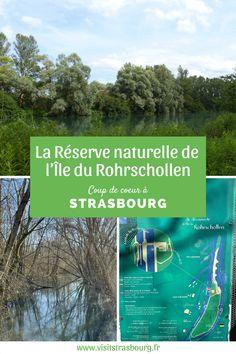À Strasbourg, il n'est pas nécessaire de faire beaucoup de kilomètres pour être dépaysé et se mettre au vert. Le parc du Rohrschollen est une réserve naturelle au bord du Rhin, protégée depuis 1997, et qui est devenue un véritable sanctuaire de la vie animale et végétale ! C'est l'endroit parfait pour déconnecter de la ville tout en découvrant un nouvel environnement ! 🌿🐸 Tourist Board, Strasbourg, Tourism, To Go, Nature Reserve, Track Bicycle, Perfect Place, Park, Drill Bit