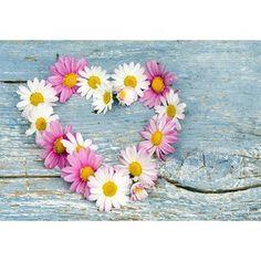 Vinylový koberec Flower Heart, 52x75 cm