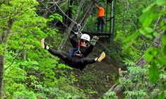 Soar through the treetops of Guanacaste's forests by ziplining the 11 cables and walking over 3 hanging bridges. Transportation Services, Leiden, Health And Safety, Congo, Costa Rica, Tours, The Originals